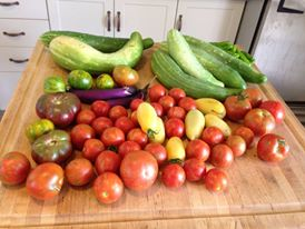 Community Supported Agriculture Supports a Bounty of Fresh Vegetables