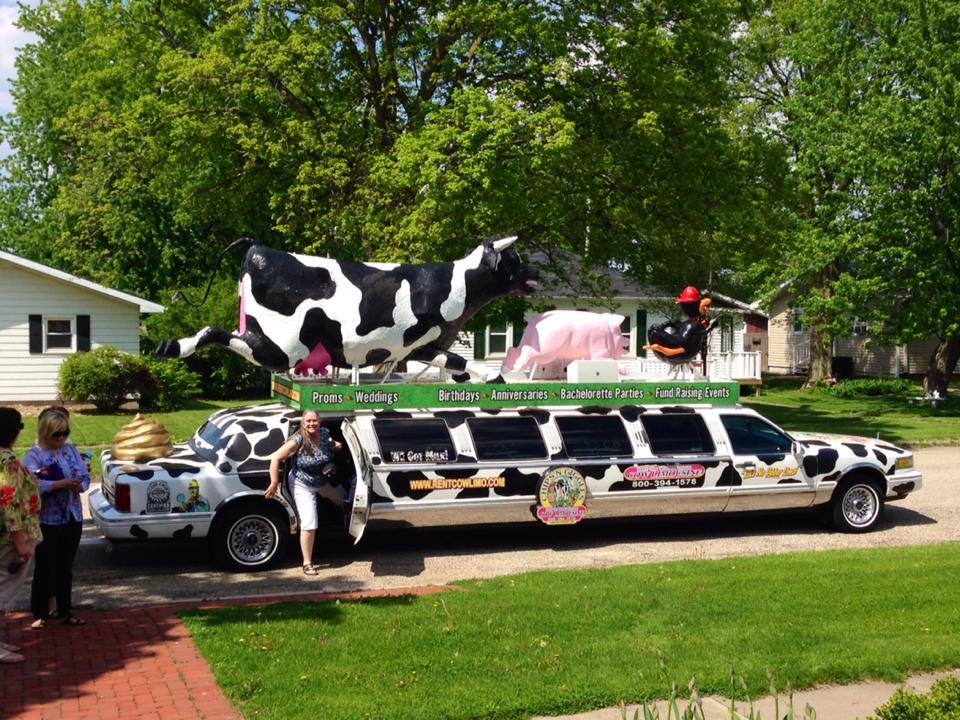 Image result for funny stretch limo pics